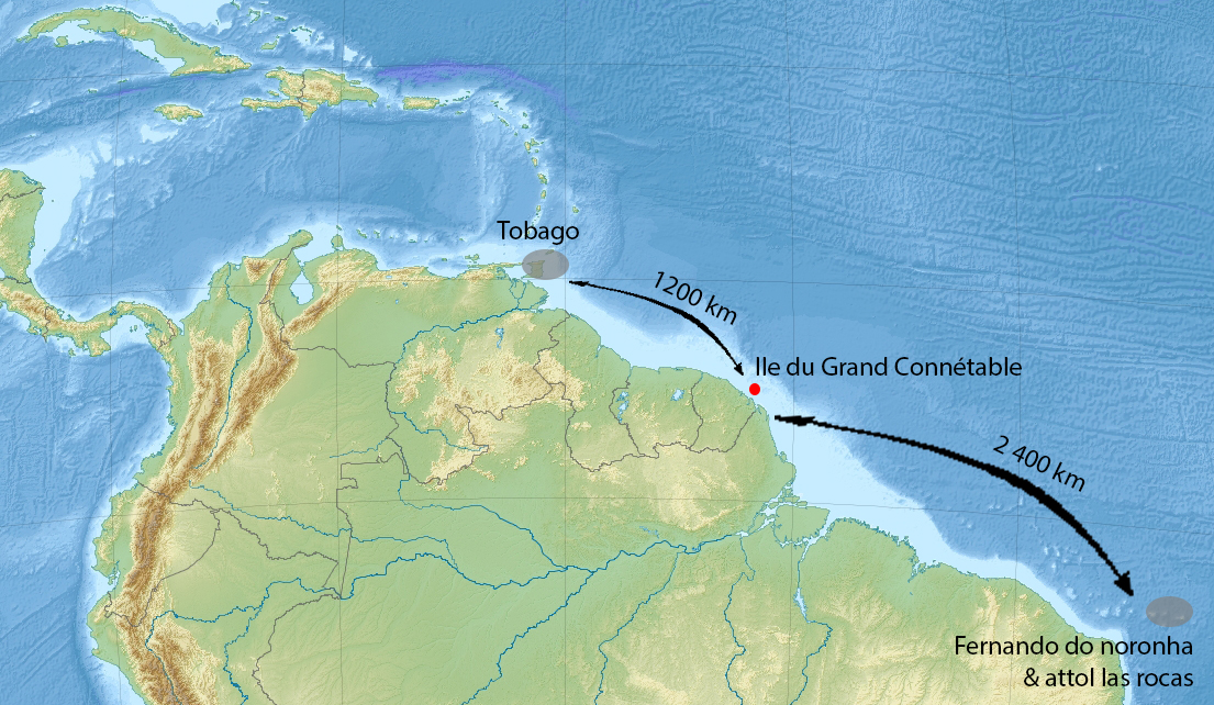 Localisation de la Réserve et des colonies d'oiseaux marins à l'échelle du Nord de l'Amérique du Sud