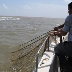 Filet abandonné remonté à bord du bateau de la Réserve (Crédits : RNNC)