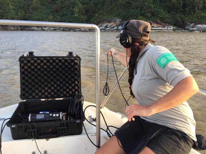 Mise à l'eau de l'hydrophone (Crédits : RNNC)