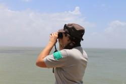 Observation depuis l'Ile du Grand-Connétable (Crédits : RNNC)