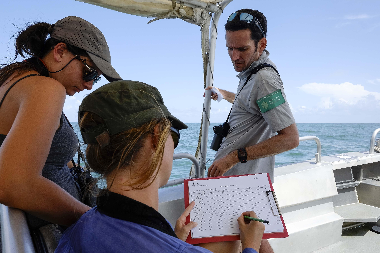 Observation des oiseaux en mer (Crédits : N.Defaux)